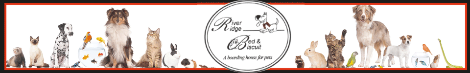 River Ridge Bed & Biscuit